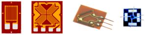 SG+Chip